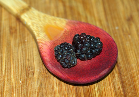 Boysenberries and juice-stained spoon
