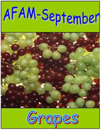 AFAM - September