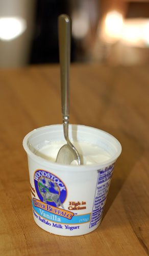 Water buffalo yogurt
