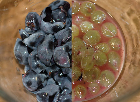Slip-skinned grapes