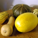bevy-o-squashes