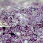 purple_couscous