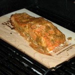 plank_salmon1
